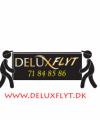 Delux Flyt